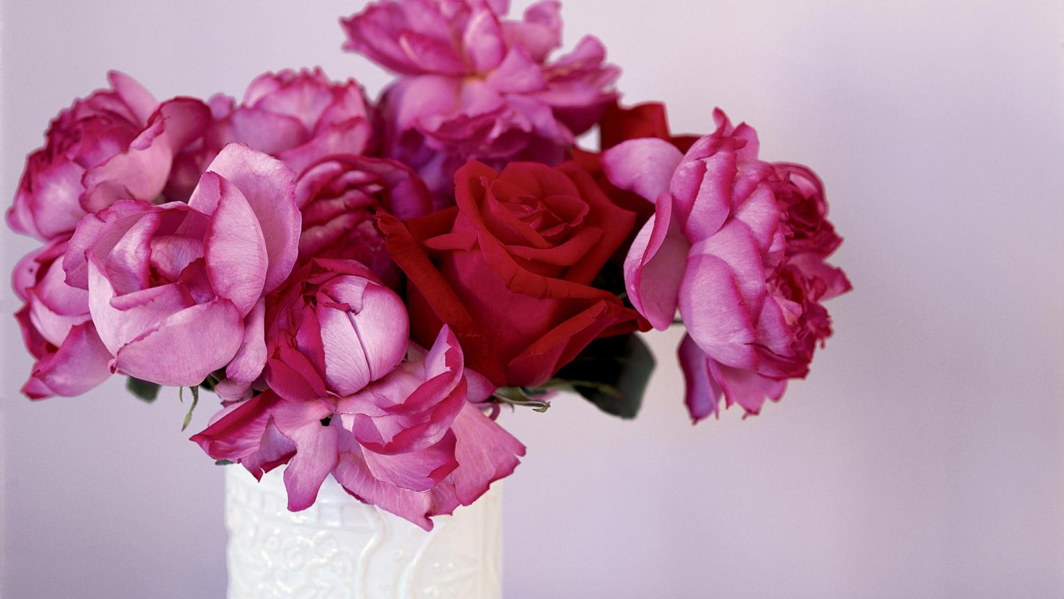 Stunning pink and red flowers symbolise romance.